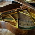 Bechstein London Baby Grand Piano Burr Walnut At Sherwood Pheonix Pianos 5