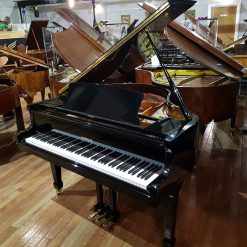 Steinbach SG-142 baby grand piano, in a black polyester case, for sale.