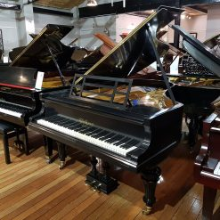 Restored Bluthner grand piano in a black case for sale.